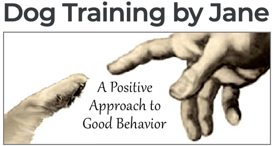 Dog Training by Jane logo